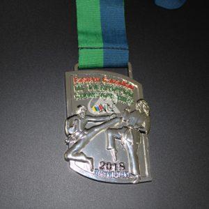 Custom Tae Kwon Do Championship Medals